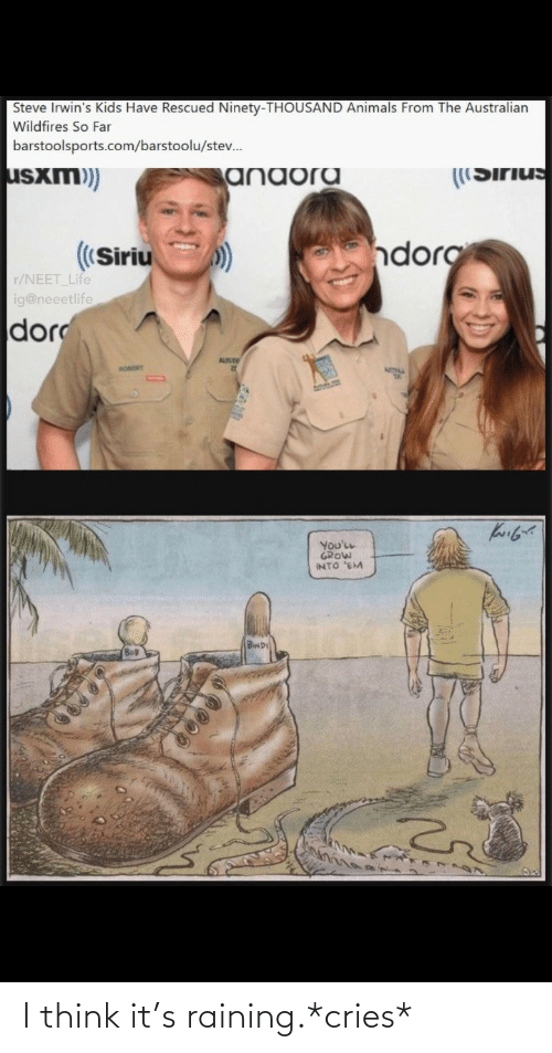 steve: Steve Irwin's Kids Have Rescued Ninety-THOUSAND Animals From The Australian  Wildfires So Far  barstoolsports.com/barstoolu/stev.  usxm)  ((Sirius  anaora  dorg  ((Siriu  r/NEET Life  ig@neeetlife  dor  AUST  RORORT  You'LL  GROW  INTO 'EM  BwD I think it's raining.*cries*