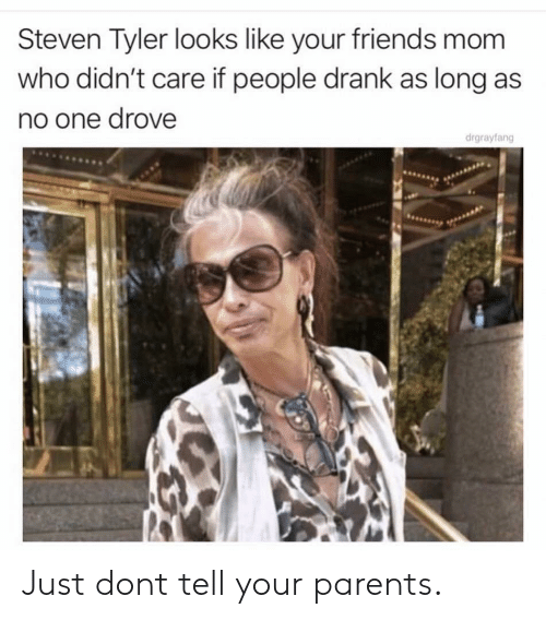 Friends, Parents, and Steven Tyler: Steven Tyler looks like your friends mom  who didn't care if people drank as long as  no one drove  drgrayfang Just dont tell your parents.