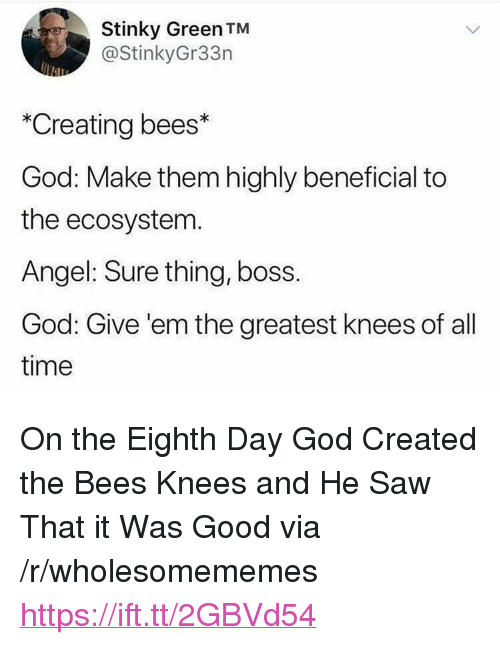 """Beneficial: Stinky Green TM  @StinkyGr33n  *Creating bees*  God: Make them highly beneficial to  the ecosystem  Angel: Sure thing, boss.  God: Give 'em the greatest knees of all  time <p>On the Eighth Day God Created the Bees Knees and He Saw That it Was Good via /r/wholesomememes <a href=""""https://ift.tt/2GBVd54"""">https://ift.tt/2GBVd54</a></p>"""