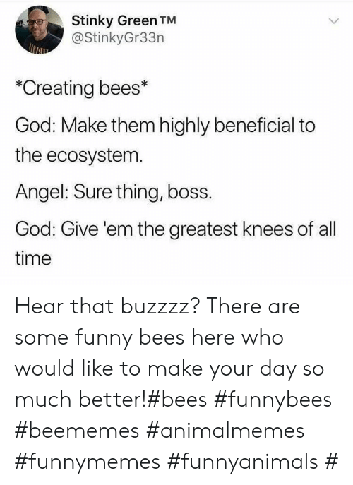 hear that: Stinky Green TM  @StinkyGr33n  *Creating bees*  God: Make them highly beneficial to  the ecosystem.  Angel: Sure thing, boss.  God: Give 'em the greatest knees of all  time Hear that buzzzz? There are some funny bees here who would like to make your day so much better!#bees #funnybees #beememes #animalmemes #funnymemes #funnyanimals #