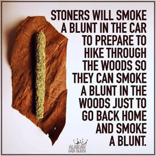 Back Home: STONERS WILL SMOKE  A BLUNT IN THE CAR  TO PREPARE TO  HIKE THROUGH  THE WOODS SO  THEY CAN SMOKE  A BLUNT IN THE  WOODS JUST TO  GO BACK HOME  AND SMOKE  A BLUNT.  ALASKAN  OM GAEEN
