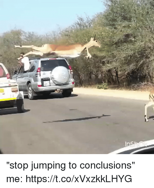 """Jumping To Conclusions: """"stop jumping to conclusions"""" me: https://t.co/xVxzkkLHYG"""