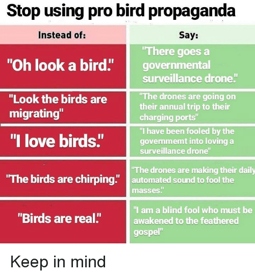 "Drone, Love, and Memes: Stop using pro bird propaganda  Instead of:  Say:  There goes a  ""Oh look a bird"" governmental  surveillance drone  The drones are going on  their annual trip to their  charging ports""  ""I have been fooled by the  govenmemt into loving a  surveillance drone  ""Look the birds are  migrating""  ""I love birds""govem  The birds are chirping"" automated sound to fool the  The drones are making their daily  masses""  I am a blind fool who must be  awakened to the feathered  gospel""  ""Birds are real."" Keep in mind"