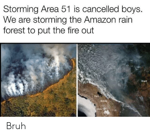 Amazon, Bruh, and Fire: Storming Area 51 is cancelled boys.  We are storming the Amazon rain  forest to put the fire out  Brazi  Bolvia  Chile Bruh