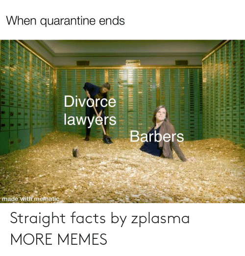 straight: Straight facts by zplasma MORE MEMES