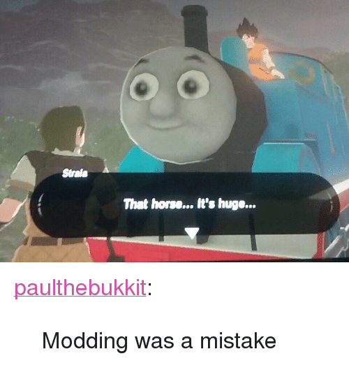 """modding: Strale  That horse... It's huge... <p><a href=""""https://paulthebukkit.tumblr.com/post/165943737647/modding-was-a-mistake"""" class=""""tumblr_blog"""" target=""""_blank"""">paulthebukkit</a>:</p><blockquote><p>Modding was a mistake</p></blockquote>"""