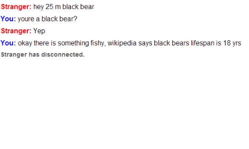 Something Fishy: Stranger: hey 25 m black bear  ou: youre a black bear?  Stranger: Yep  You: okay there is something fishy, wikipedia says black bears lifespan is 18 yrs  Stranger has disconnected.
