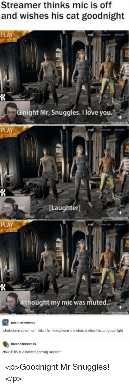 """Love, Memes, and I Love You: Streamer thinks mic is off  and wishes his cat goodnight  PLAY  İATT  Gnight Mr, Snuggles.I love you.""""  PLAY  [Laughter]  PLAY  lthought my mic was muted""""  SOURCE  positive-memes  wholesome streamer thinks his microphone is muted, wishes his cat goodnight  thecheshirecasS  Now THIS is a heated gaming moment. <p>Goodnight Mr Snuggles!</p>"""