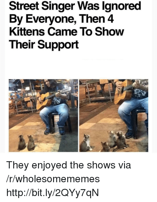 Http, Kittens, and Via: Street Singer Was lgnored  By Everyone, Then 4  Kittens Came To Show  Their Support They enjoyed the shows via /r/wholesomememes http://bit.ly/2QYy7qN