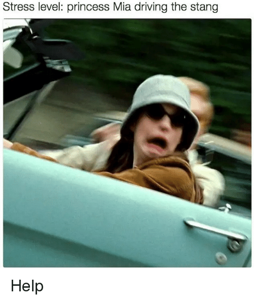 Stress Level: Stress level: princess Mia driving the stang Help