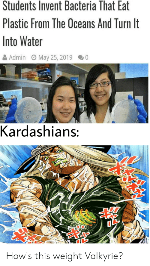 Kardashians, Water, and Valkyrie: Students Invent Bacteria That Eat  Plastic From The Oceans And Turn It  Into Water  May 25, 2019  Admin  Kardashians: How's this weight Valkyrie?