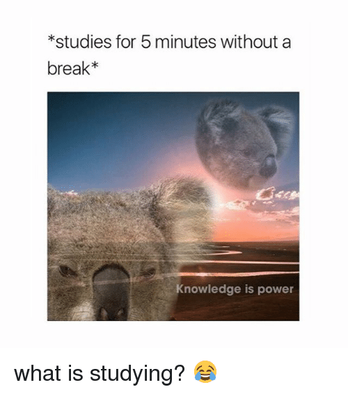 25 Best Memes About Knowledge Is Power Knowledge Is Power Memes