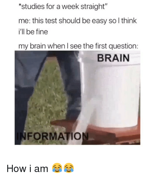 """Funny, Formation, and Brain: studies for a week straight""""  me: this test should be easy so l think  i'll be fine  my brain when l see the first question:  BRAIN  FORMATION How i am 😂😂"""