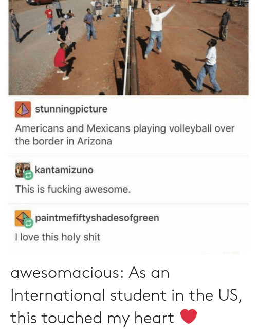 fucking awesome: stunningpicture  Americans and Mexicans playing volleyball over  the border in Arizona  kantamizuno  This is fucking awesome.  paintmefiftyshadesofgreen  I love this holy shit awesomacious:  As an International student in the US, this touched my heart ❤️