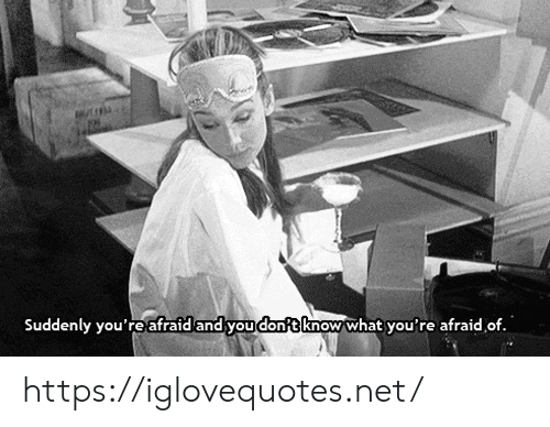 Net, You, and What: Suddenly you'reafraid and you dont know what you're afraid of. https://iglovequotes.net/