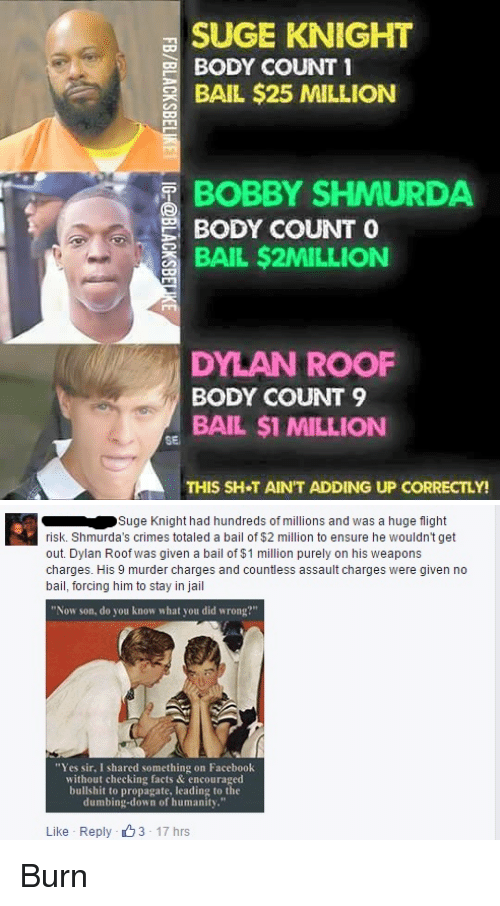 "Dylan Roof: SUGE KNIGHT  BODY COUNT 1  BAIL $25 MILLION  BOBBY SHMURDA  BODY COUNT  O  BAIL $2MILLION  DYLAN ROOF  BODY COUNT 9  BAIL $1 MILLION  SE  THIS SH T AIN'T ADDING UP CORRECTLY!   Suge Knight had hundreds of millions and was a huge flight  risk. Shmurda's crimes totaled a bail of $2 million to ensure he wouldn't get  out. Dylan Roof was given a bail of $1 million purely on his weapons  charges. His 9 murder charges and countless assault charges were given no  bail, forcing him to stay in jail  ""Now son, do you know what you did wrong?""  ""Yes sir, I shared something on Facebook  without checking facts & encouraged  bullshit to propagate, leading to the  dumbing-down of humanity.""  Like Reply 3 17 hrs Burn"