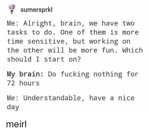 Fucking, Brain, and Time: sumersprkl  Me: Alright, brain, we have two  tasks to do. One of them is more  time sensitive, but working on  the other will be more fun. Which  should I start on?  My brain: Do fucking nothing for  72 hours  Me: Understandable, have a nice  day meirl