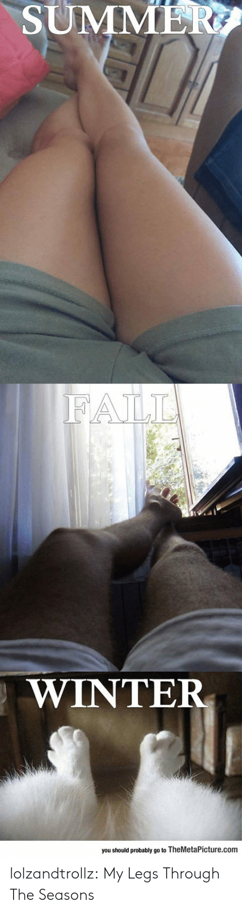 Fall, Tumblr, and Winter: SUMMER  FALL  WINTER  you should probably go to TheMetaPicture.com lolzandtrollz:  My Legs Through The Seasons