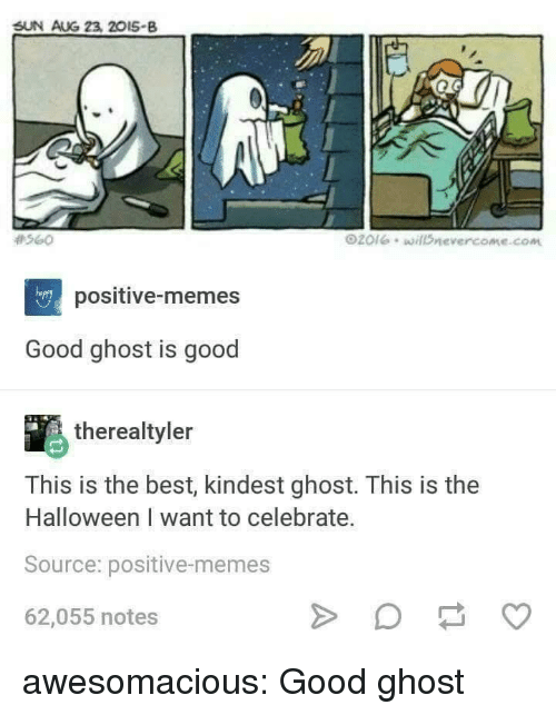 Halloween, Memes, and Tumblr: SUN AUG 23, 20I5-B  #560  O20leillDnevercome.com  happy  positive-memes  Good ghost is good  therealtyler  This is the best, kindest ghost. This is the  Halloween I want to celebrate.  Source: positive-memes  62,055 notes awesomacious:  Good ghost