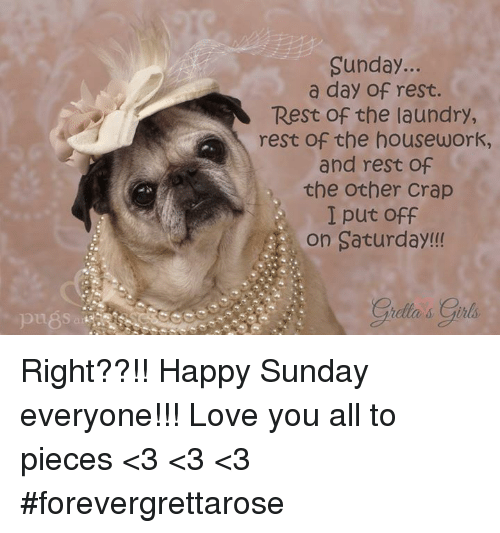Housework: Sunday  a day of rest.  Rest of the laundry,  rest of the housework,  and rest of  the other Crap  I put off  on Saturday!  s Girls Right??!! Happy Sunday everyone!!! Love you all to pieces <3 <3 <3 #forevergrettarose