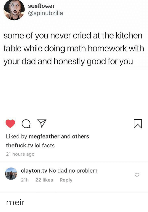 Good For You: sunflower  @spinubzilla  some of you never cried at the kitchen  table while doing math homework with  your dad and honestly good for you  Liked by megfeather and others  thefuck.tv lol facts  21 hours ago  clayton.tv No dad no problem  22 likes  Reply  21h meirl