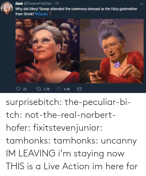 im here: surprisebitch:  the-peculiar-bi-tch:  not-the-real-norbert-hofer:  fixitstevenjunior:  tamhonks:  tamhonks: uncanny   IM LEAVING    i'm staying   now THIS is a Live Action im here for