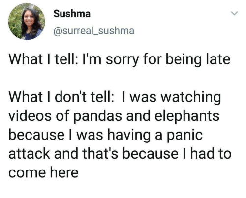 panic: Sushma  @surreal_sushma  What I tell: I'm sorry for being late  What I don't tell: I was watching  videos of pandas and elephants  because I was having a panic  attack and that's because I had to  come here