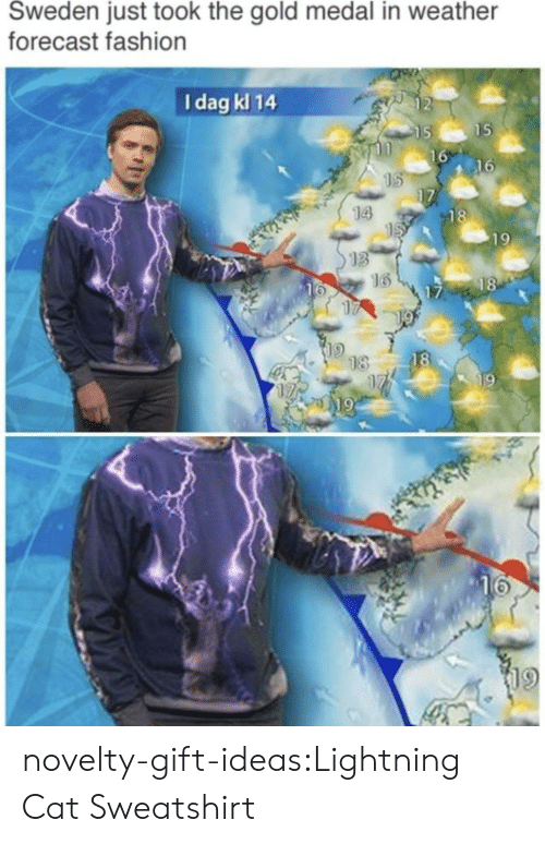 sweatshirt: Sweden just took the gold medal in weather  forecast fashion  I dag kl 14  2  15  16  16  14  18  19  13  16  18  16  17  18  18  19  19  19 novelty-gift-ideas:Lightning Cat Sweatshirt