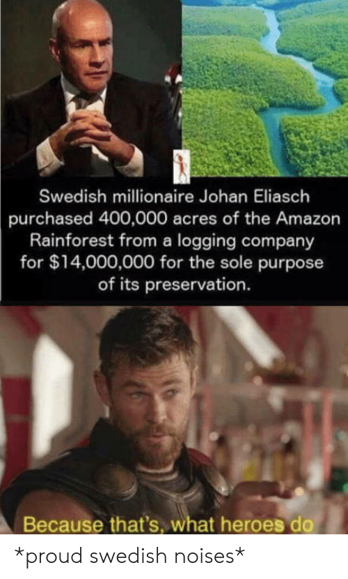 Swedish: Swedish millionaire Johan Eliasch  purchased 400,000 acres of the Amazon  Rainforest from a logging company  for $14,000,000 for the sole purpose  of its preservation.  Because that's, what heroes do *proud swedish noises*