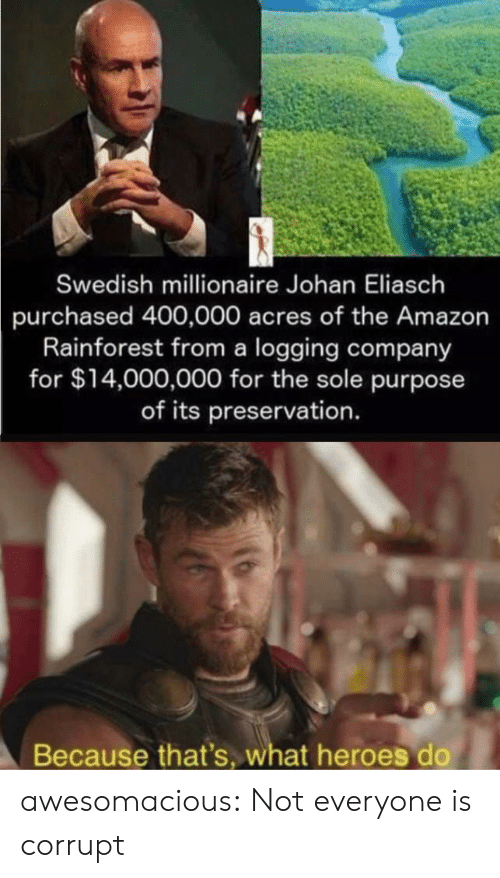 Swedish: Swedish millionaire Johan Eliasch  purchased 400,000 acres of the Amazon  Rainforest from a logging company  for $14,000,000 for the sole purpose  of its preservation.  Because that's, what heroes do awesomacious:  Not everyone is corrupt