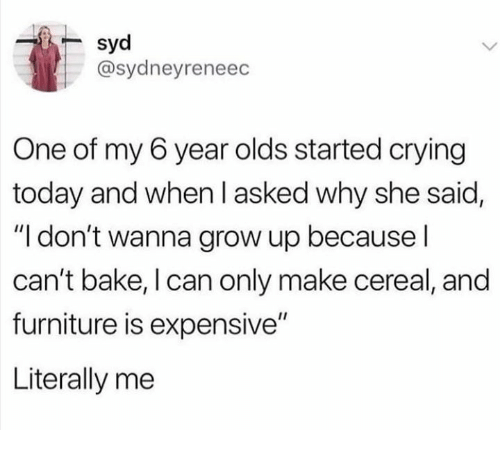"""Syd: syd  @sydneyreneec  One of my 6 year olds started crying  today and when l asked why she said,  """"I don't wanna grow up because l  can't bake, I can only make cereal, and  furniture is expensive""""  Literally me"""
