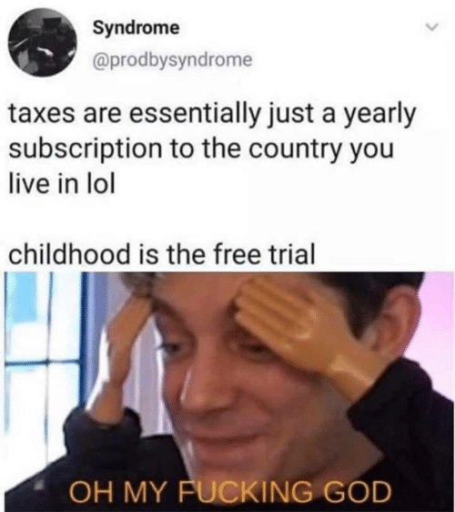 Taxes: Syndrome  @prodbysyndrome  taxes are essentially just a yearly  subscription to the country you  live in lol  childhood is the free trial  OH MY FUCKING GOD