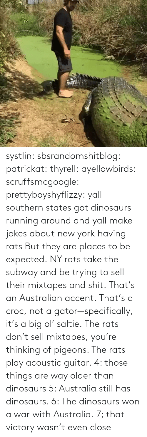 Places: systlin: sbsrandomshitblog:  patrickat:   thyrell:  ayellowbirds:  scruffsmcgoogle:  prettyboyshyflizzy: yall southern states got dinosaurs running around and yall make jokes about new york having rats  But they are places to be expected. NY rats take  the subway and be trying to sell their mixtapes and shit.  That's an Australian accent. That's a croc, not a gator—specifically, it's a big ol' saltie. The rats don't sell mixtapes, you're thinking of pigeons. The rats play acoustic guitar.   4: those things are way older than dinosaurs   5: Australia still has dinosaurs.    6: The dinosaurs won a war with Australia.  7; that victory wasn't even close
