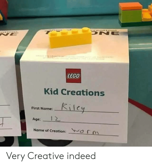 first name: t  0a  DNE  NE  LEGO  Kid Creations  Kilcy  First Name:  Age:  Name of Creation: orm Very Creative indeed