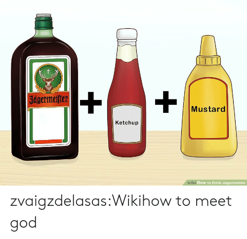 God, Tumblr, and Blog: t  |Jagermeifter  Mustard  Ketchup  wiki How to Drink Jagermeister zvaigzdelasas:Wikihow to meet god