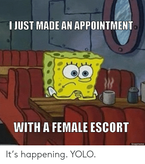 appointment: T JUST MADE AN APPOINTMENT  WITH A FEMALE ESCORT  Snapmeme It's happening. YOLO.