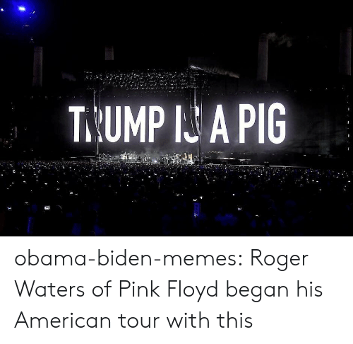 Memes, Obama, and Pink Floyd: T.UMP I A PIG obama-biden-memes: Roger Waters of Pink Floyd began his American tour with this