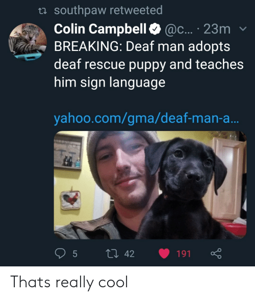 campbell: ta southpaw retweeted  Colin Campbell@c... 23m  BREAKING: Deaf man adopts  deaf rescue puppy and teaches  him sign languag  yahoo.com/gma/deaf-man-a Thats really cool