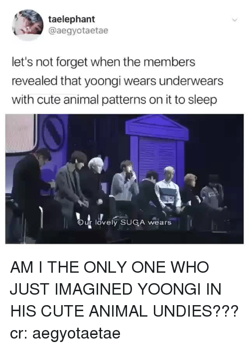 Cute, Animal, and Only One: taelephant  @aegyotaetae  let's not forget when the members  revealed that yoongi wears underwears  with cute animal patterns on it to sleep  Our lovely SUGA wears AM I THE ONLY ONE WHO JUST IMAGINED YOONGI IN HIS CUTE ANIMAL UNDIES???cr: aegyotaetae