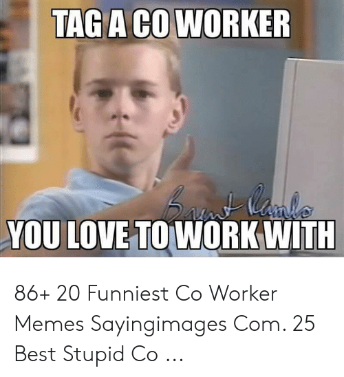 Co Worker Memes: TAG A CO WORKER  YOU LOVE TO WORK WITH 86+ 20 Funniest Co Worker Memes Sayingimages Com. 25 Best Stupid Co ...