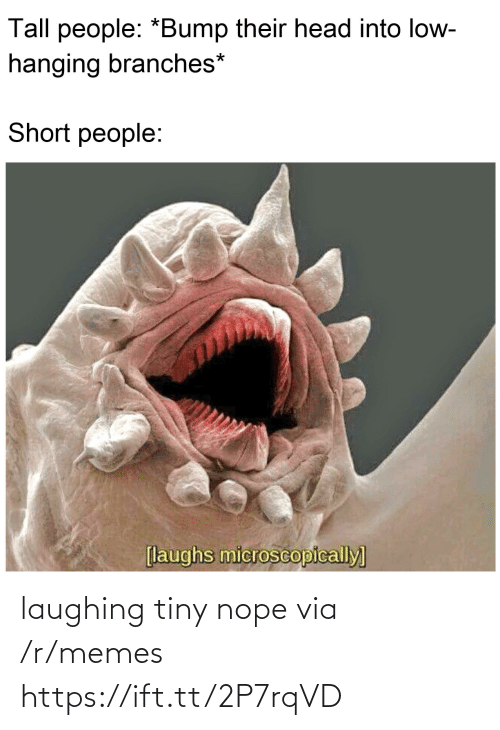 Head, Memes, and Nope: Tall people: *Bump their head into low-  hanging branches*  Short people:  [laughs microscopically] laughing tiny nope via /r/memes https://ift.tt/2P7rqVD