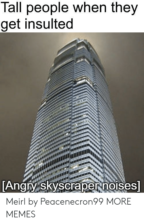 Dank, Memes, and Target: Tall people when they  get insulted  Angry skyscrapernorses Meirl by Peacenecron99 MORE MEMES