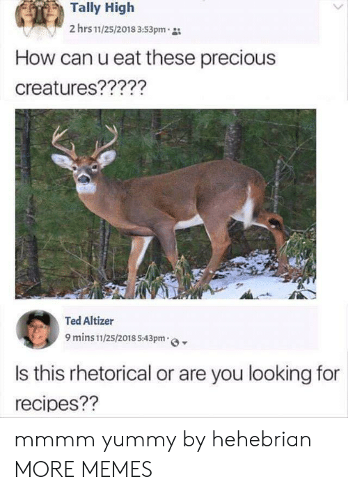 Dank, Memes, and Precious: Tally High  2 hrs 11/25/2018 3:53pm  How can u eat these precious  creatures?????  Ted Altizer  9 mins 11/25/2018 5:43pm  Is this rhetorical or are you looking for  recipes?? mmmm yummy by hehebrian MORE MEMES