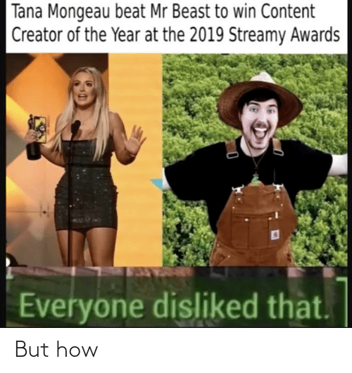Tana Mongeau: Tana Mongeau beat Mr Beast to win Content  Creator of the Year at the 2019 Streamy Awards  Everyone disliked that. But how