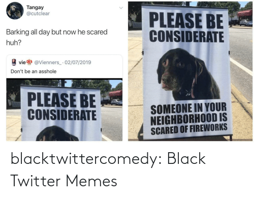 Twitter Memes: Tangay  @cutclear  PLEASE BE  CONSIDERATE  Barking all day but now he scared  huh?  vie  @Vienners_· 02/07/2019  Don't be an asshole  PLEASE BE  CONSIDERATE  SOMEONE IN YOUR  NEIGHBORHOOD IS  SCARED OF FIREWORKS blacktwittercomedy:  Black Twitter Memes
