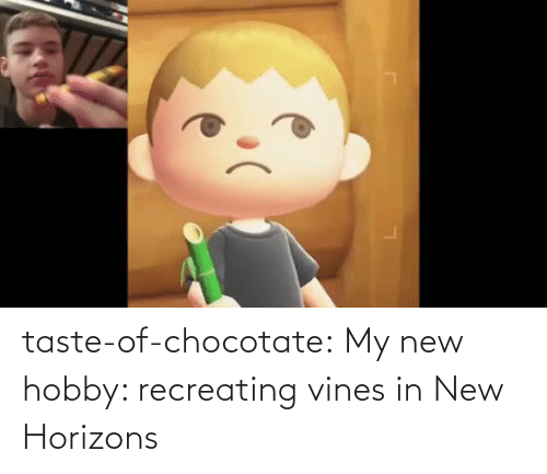 Taste: taste-of-chocotate: My new hobby: recreating vines in New Horizons