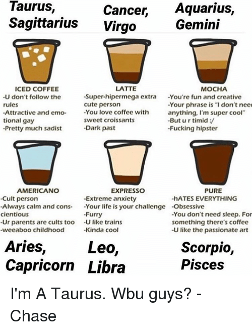 Taurus Cancer Aquarius Sagittarius Virgo Gemini ICED COFFEE