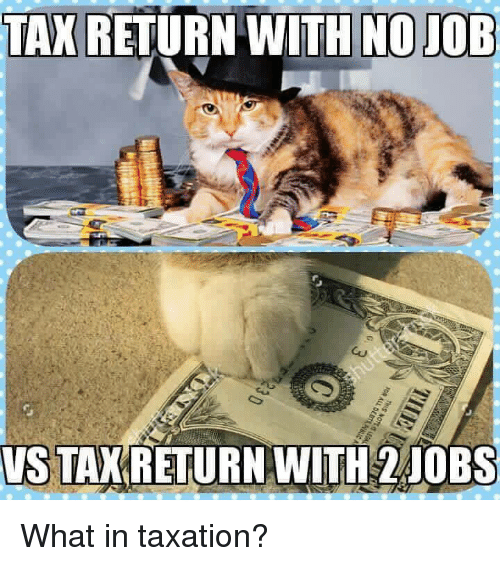Memes, Tax Return, and 🤖: TAX  RETURN WITH NOJOB  VS TAK RETURN WITH 2 JOBS What in taxation?