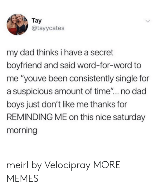 """Tay: Tay  @tayycates  my dad thinks i have a secret  boyfriend and said word-for-word to  me """"youve been consistently single for  a suspicious amount of time... no dad  boys just don't like me thanks for  REMINDING ME on this nice saturday  morning meirl by Velocipray MORE MEMES"""