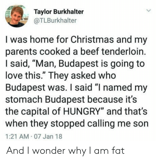 """Beef, Christmas, and Hungry: Taylor Burkhalter  @TLBurkhalter  I was home for Christmas and my  parents cooked a beef tenderloin.  I said, """"Man, Budapest is going to  love this."""" They asked who  Budapest was. I said """"I named my  stomach Budapest because it's  the capital of HUNGRY"""" and that's  when they stopped calling me son  1:21 AM 07 Jan 18  And I wonder why I am fat"""